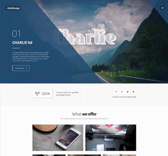 طراحی سایت حرفه ای طراحی سایت