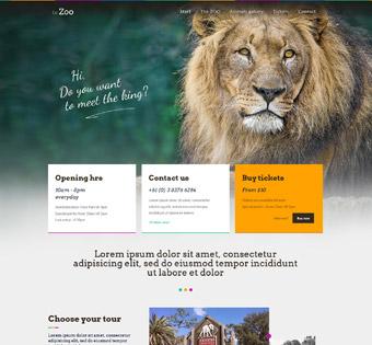 طراحی سایت حرفه ای باغ وحش